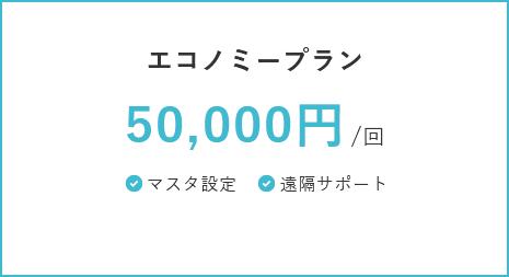 エコノミープラン 50,000円/回 マスタ設定・遠隔サポート